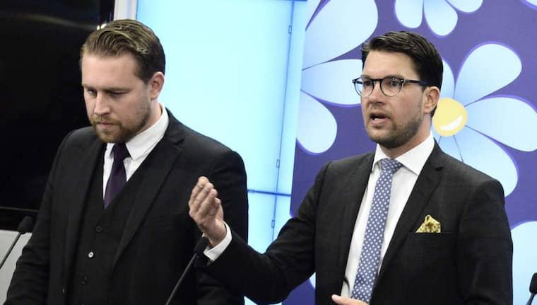 SD:s gruppledare i riksdagen Mattias Karlsson, här bredvid partiledaren Jimmie Åkesson, har skrivit artiklar anonymt på hatsajten Avpixlat. Foto: Claudio Bresciani/TT
