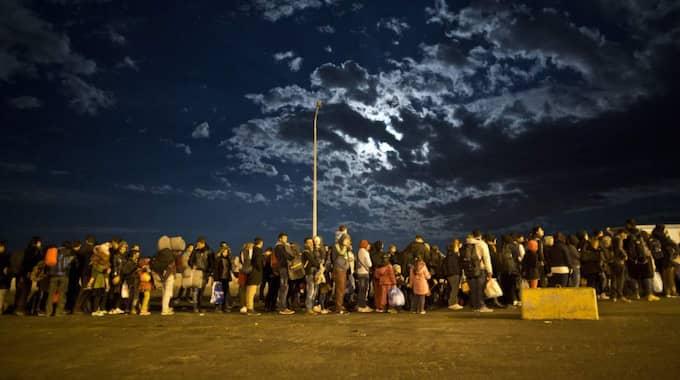 I LIMBO. Några av de tusentals flyktingar som varje dag når Lesbos i Grekland köar för en plats på färjan till Aten. Foto: Muhammed Muheisen
