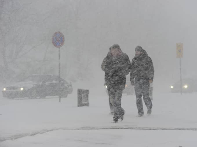 Det kanske inte blir någon riktig hetta direkt – men över temperaturen kommer i alla fall att ta sig över nollan i Götaland. Foto: Stefan Söderström