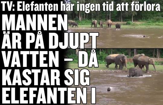Rånet I Skärholmen