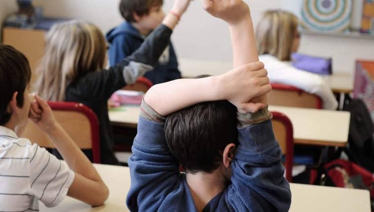 Lärarnas riksförbund önskar mer ordning och reda bland skolaktörerna. Foto: Philippon Joel