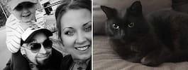 Katten Svartis sprang bort – kom tillbaka efter ett år