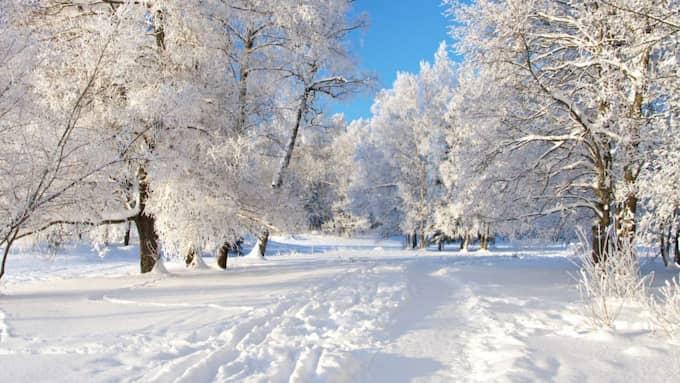 Den ryska kylan har Västsverige i ett kallt grepp.