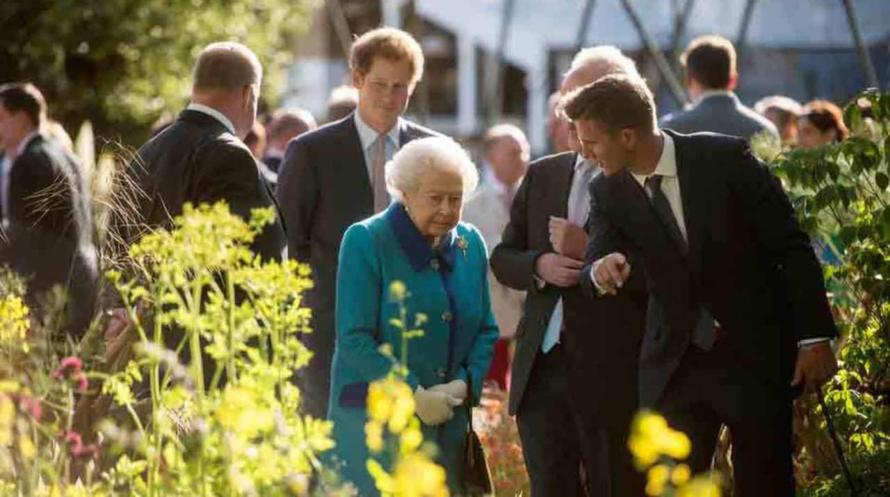 Prins harrys trädgård prisades under chelsea flower show i london ...