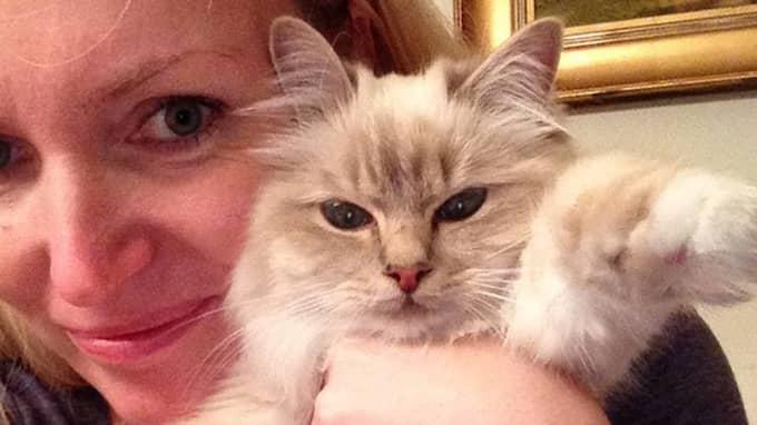 Katten Maräng med sin riktiga matte – Jessica Olsbo från Partille. Foto: Privat
