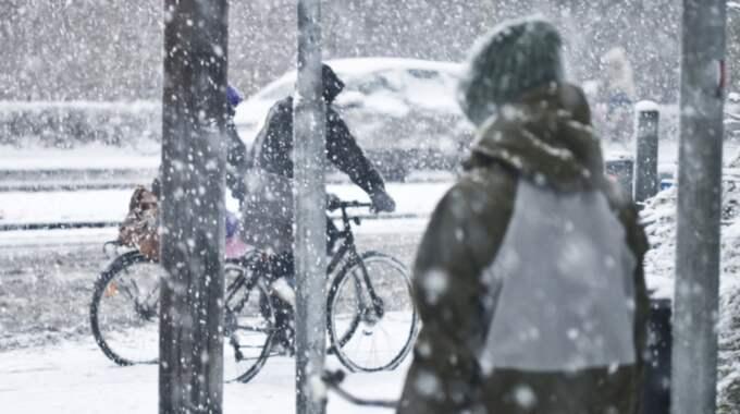 Snö och hårda vindar i Jämtlandsfjällen och hårda eller mycket hårda vindbyar i Götaland. Foto: Colourbox/Skovdal
