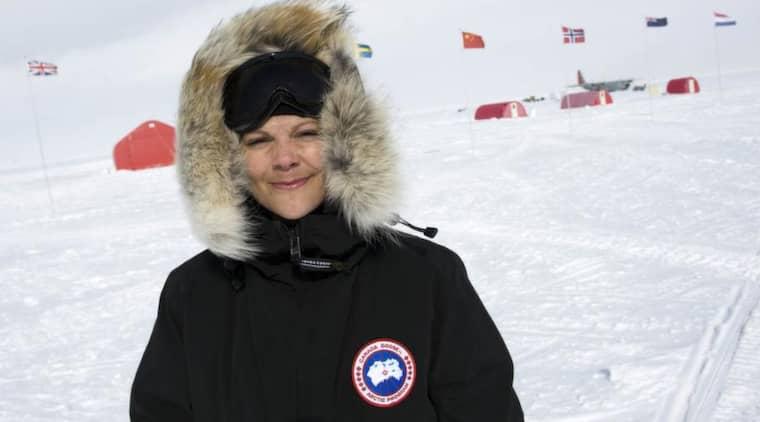 Har rutin. Victoria är inte ovan vid kyliga miljöer. Redan 2009 var hon på Grönland för att studera klimatförändringar. Foto: Jonas Ekströmer / Scanpix