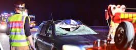 Flera bilar inblandade i masskrock med älg