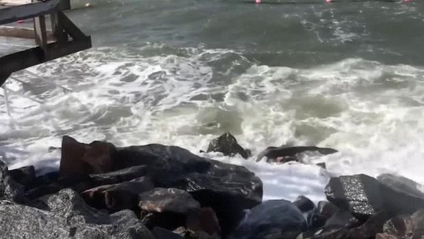 """SMHI varnar för hårda vindar: """"Kan bli stormstyrka"""""""
