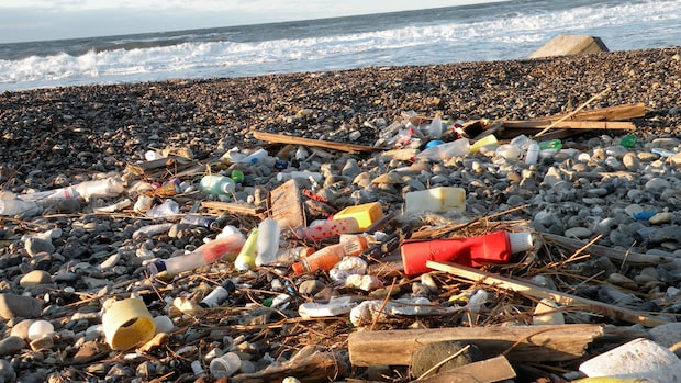 Strängare regler för plast: Fängelse eller 370 000 kronor i böter