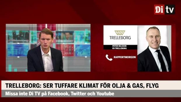 Trelleborgs vd: Skulle kunna vara mer positiva i våra utsikter