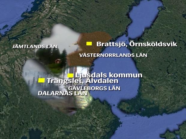 Här är de allvarligaste skogsbränderna just nu