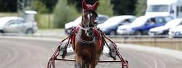 Har två hästar på V75 – anmäld för vanvård