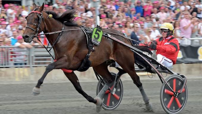 Foto: / Foto: Lars Jakobsson/Kanal 75