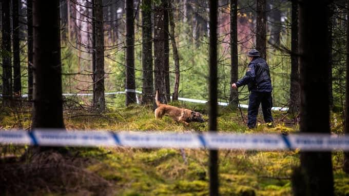 Fynden som gjordes vid mordplatsen i Ulricehamn var viktiga när en gärningsmannaprofil togs fram. Foto: HENRIK JANSSON