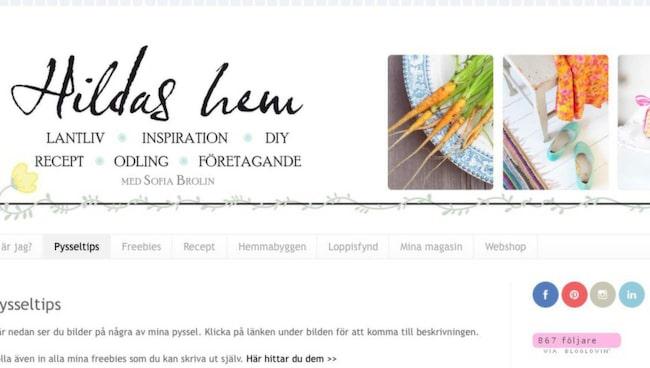 Hildas hem drivs av Sofia Brolin som är frilansande formgivare. Hon har även en webbshop där hon säljer tavlor och prints som hon gör själv.