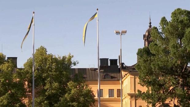 Skolinspektionen om anmälningar mot prinsessan Estelles skola