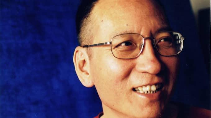 Liu Xiaobo. Foto: LIU XIA / HANDOUT / EPA / TT / EPA TT NYHETSBYRÅN