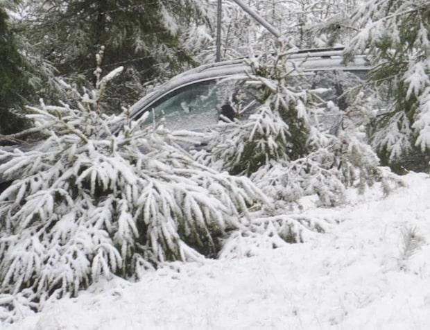 Snökaos – bil körde av vägen
