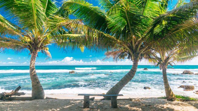Vi lovar att du hittar en strand att älska om du reser till Sri Lanka – här finns stränder för alla smaker.