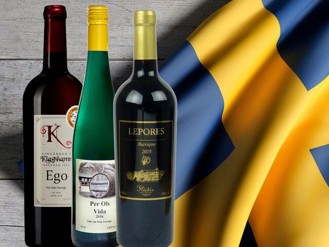 I ärlighetens namn är det många som inte ens vet om att det finns svenskt vin - men det gör det.