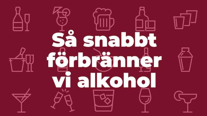 hur fort går alkohol ur kroppen