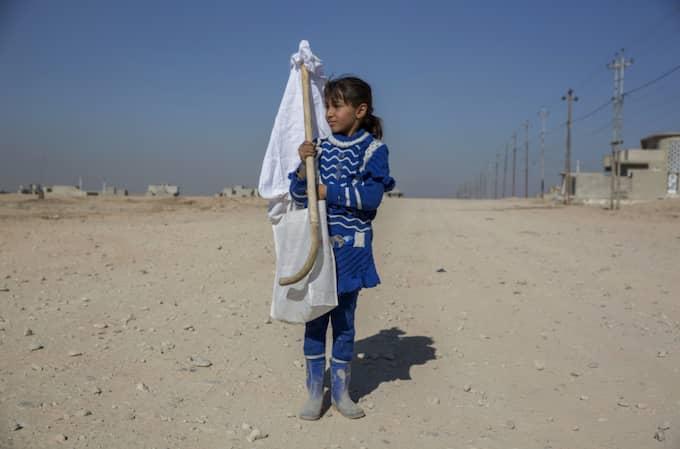 Azareh, 9, bär på en vit flagga för att inte riskera att bli skjuten. Foto: Niclas Hammarström