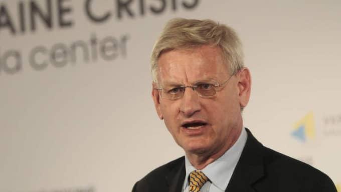 Vi uppmanar FN:s säkerhetsråd att agera, skriver utrikesminister Carl Bildt i dagens Expressen. Foto: Sergei Chuzavkov