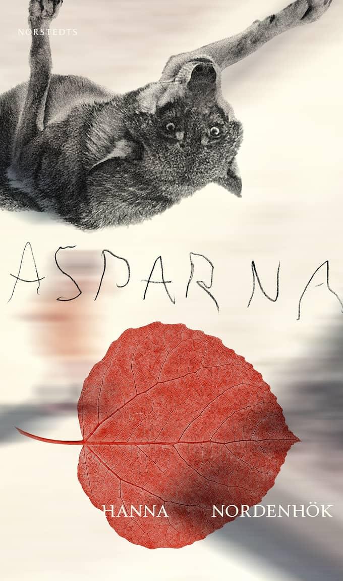 """""""Asparna"""" är Hanna Nordenhöks tredje roman."""