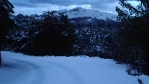 Delar av Mallorca är täckt av snö. Foto: Twitter/Meteodemallorca