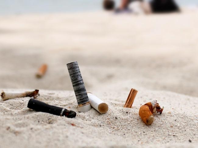 Över en halv miljon cigarettfimpar samlades in på stranden Bibione mellan 2014 och 2015.