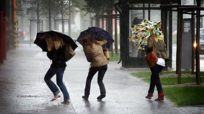 Håll i hatt och paraply – det väntas blåsa hårt under onsdagsdygnet. Foto: JOHAN NILSSON / SCANPIX