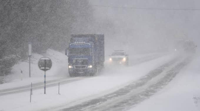 I norra Sverige råder högtryck vilket kan ge riktigt kalla temperaturer, ned emot 30 minus på sina håll i de nordligaste delarna. Bilden är tagen i Hudiksvall tidigare. Foto: Fredrik Sandberg/TT
