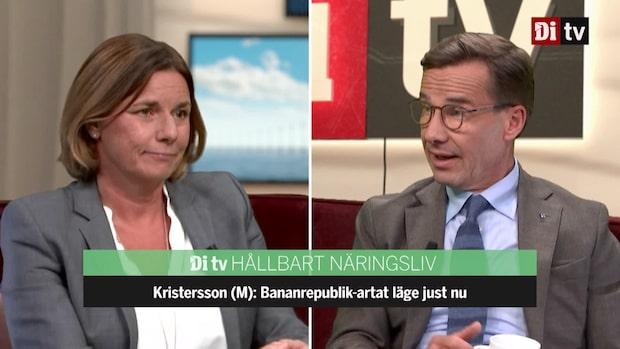 """Kristerssons (M) pik mot Lövin (MP): """"Det är bananrepublik-artat"""""""