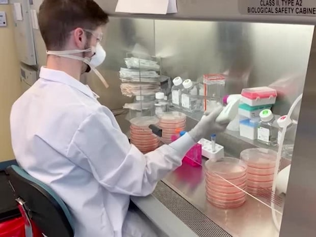 """Vaccinforskaren: """"Satsar på antikroppar som kan slå ihjäl viruset"""""""