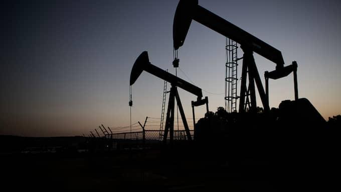 Oljeföretagen mördar medvetet, menar den förre govenören. Foto: AXEL ÖBERG / AXEL ÖBERG EXPRESSEN