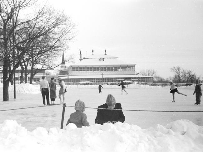 Den klassiska skridskobanan på Skansen gör nu comeback.