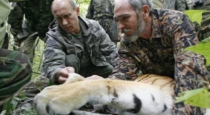 Premiärminister Putin kollar in sitt byte. Foto: Alexei Druzhinin/AP