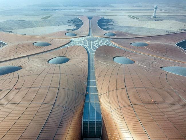 Taket har en mäktig, futuristisk design.