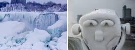 Kylan får Niagarafallen att frysa till is
