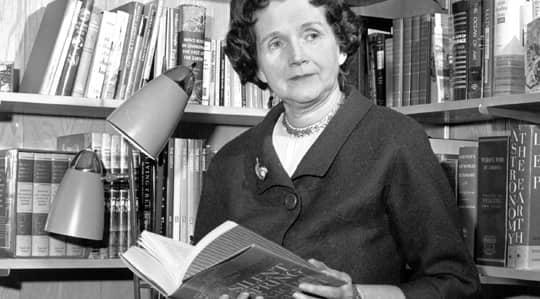 """Amerikanska marinbiologen Rachel Carson varnade i """"Tyst vår"""" för gifterna – och skakade världen."""
