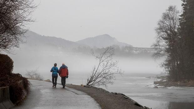 Kraftigt blåsoväder i stora delar av Sverige