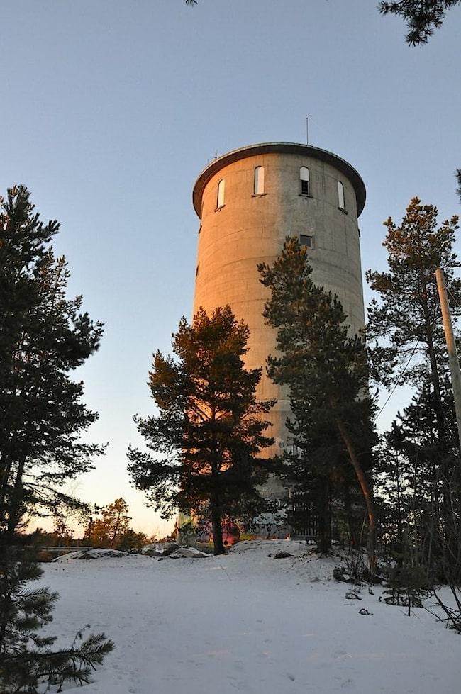 Tornet i kvällsljus.