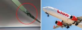 Läbbig fripassagerare satte skräck i flygplanet
