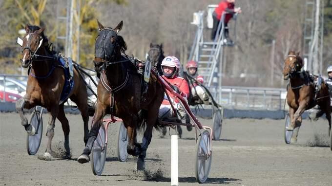 Foto: Martin Langels/ALN/Kanal 75