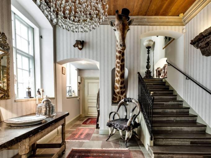 Lägenheten är utrustad med en giraff, som inte ingår i köpet. Foto: Ekenstam