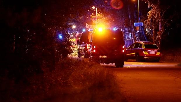 Tiotal bilar sattes i brand på parkering