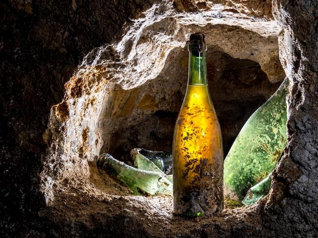 Hittills har man hittat 19 flaskor välbehållen champagne.