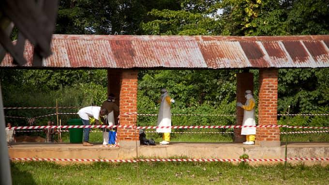 Att ebolan nått miljonstaden Mbandaka fruktas förvärra spridningen av sjukdomen. Foto: MARK NAFTALIN / UNICEF HANDOUT / EPA / EPA TT NYHETSBYRÅN