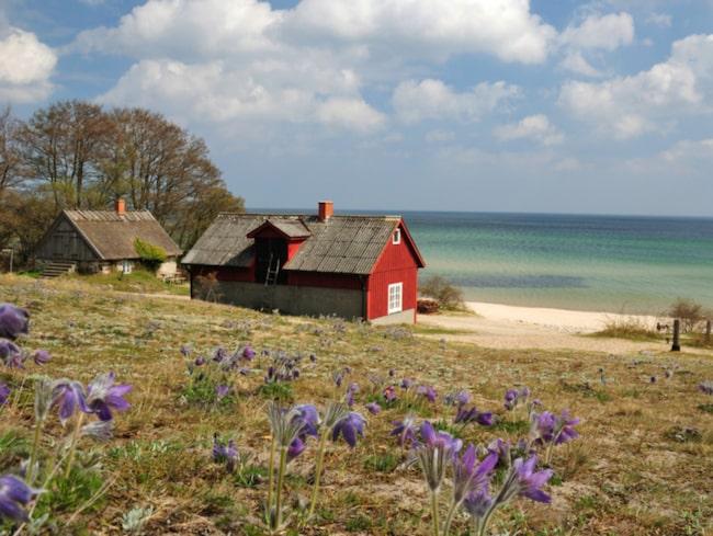 <span>Skåne lockar ovanligt många turister från Storbritannien i år.</span>